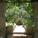 Foto di Hotel La Certosella