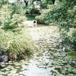 屋島寺 血の池