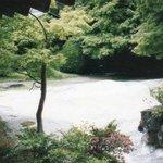 屋島寺 石庭