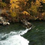 Beautiful foliage - 17 Sept 2014