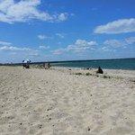 Oak Bluff Town Beach