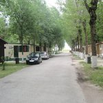 Photo of Alba D'Oro Camping