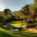 Golf Son Vida Foto