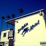 Motel Dolphin