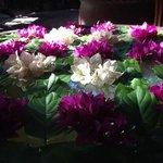 Foto de Khmer Surin Boutique Guesthouse