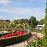 Rose Garden at Radisson Blu
