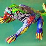 Oaxacan Lizard