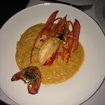 Lobster dorado