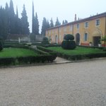 courtyard / garden