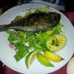 Grilled Orata (Sea Bream)