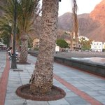 Ocean front by The Gomera Lounge. There are many cafes and shops, and a bus stop is 200 m away.