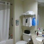 Bathroom (Room 134)