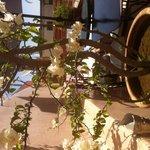 bougainvilliers sur la terrasse du Riad Oasissime