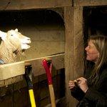 Meeting the goats. So fun!
