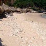 la Isla Ixtapa