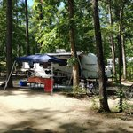 A shady campsite