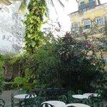 Photo of Jardim Das Delicias