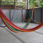 hammock display