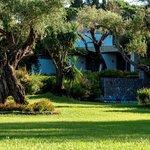 Gardens - Landscape (3)