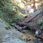 Waterfall on the north fork of Soberanes Creek