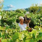 Agreco Farm organic products
