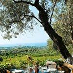Agreco Farm overlooking Rethymno