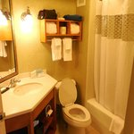 Pleasant and large bathroom with lots of surface space