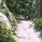 Trail leading to Vista Point