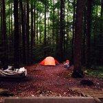 Campsite b42