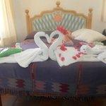 decoro con asciugamani