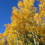 Great views of the Aspens