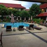 Grande piscine propre et sympa