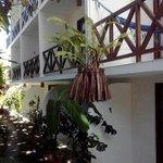 balcones de Borboleta