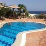 Pool at Bedouin Moon Hotel