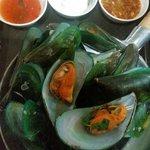 A sea mussel