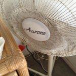 Floor fan in master bedroom.  Yuck!