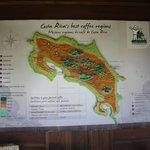 Melhores regiões de café da Costa Rica
