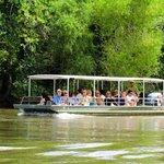 Honey Island swamp boat