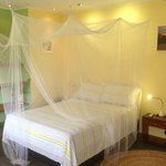 Double beds with sofa or 2  double beds
