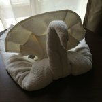 Miracle of Housekeeping 2 (Thanks Anvesh)