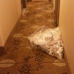 Garbage dumped in Hallway