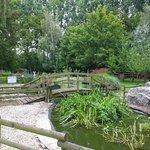 Le petit plan d'eau et le joli pont en bois