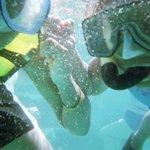 Snorkeling at Turles Cove at Buck Island