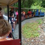 On the miniature train