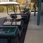 Army of golf carts to rent
