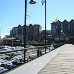 from the wharf