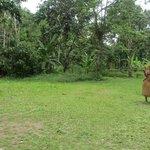 De visita a la comunidad de los Yaguas.
