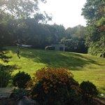 Backyard at Long Dell Inn