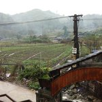 View outside the homestay