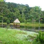 Pavillon in lagoon